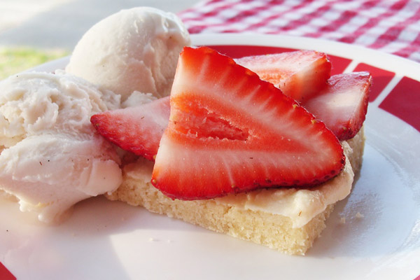 Strawberry-Shortbread-Bars-A-delicious-dairy-free-recipe-for-barbecues-potlucks-and-more-vegan-too-3